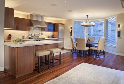 Replacing-Fluorescent-Lights-Open-Kitchen-Home-Design-Photos