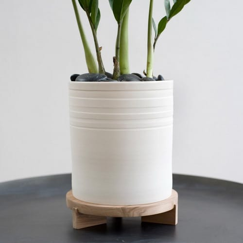 Indoor Flower Pots