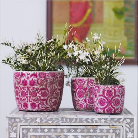 Vintaged-Rose-Indoor-Ceramics-Plant-Pots