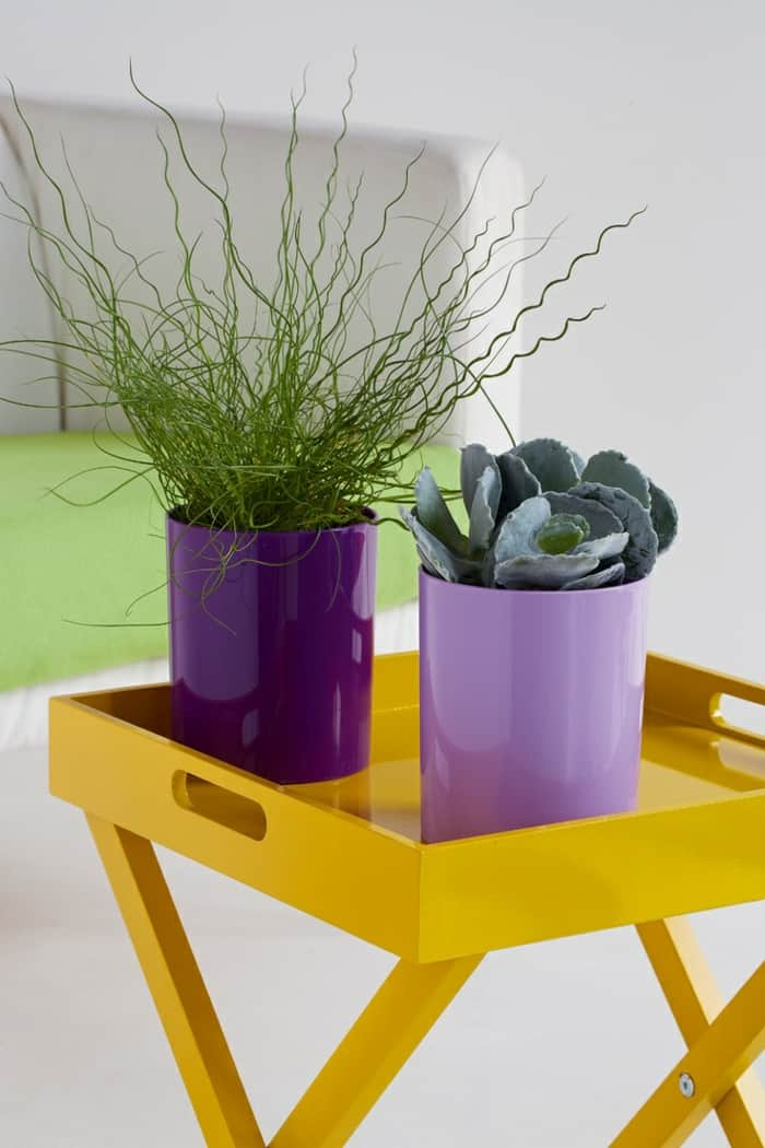 Purple planters plant pots yellow wooden stand indoor garden ideas