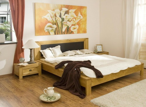 skin-colors-for-a-feng-shui-bedroom-design
