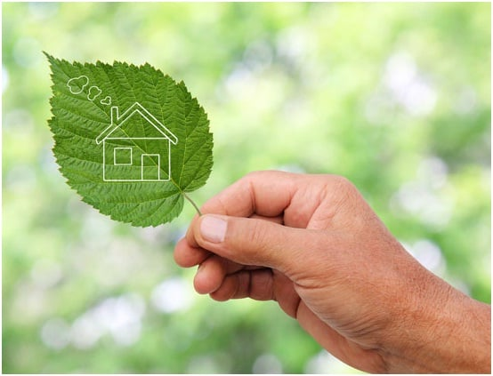 Ecological Living – You Should Pay Attention