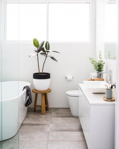 plants create a natural and warm atmosphere in the bathroom